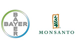 bayer-e-monsanto